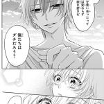 花とゆめCOMICS 喧嘩番長 乙女〜恋のバトルロワイヤル〜2巻